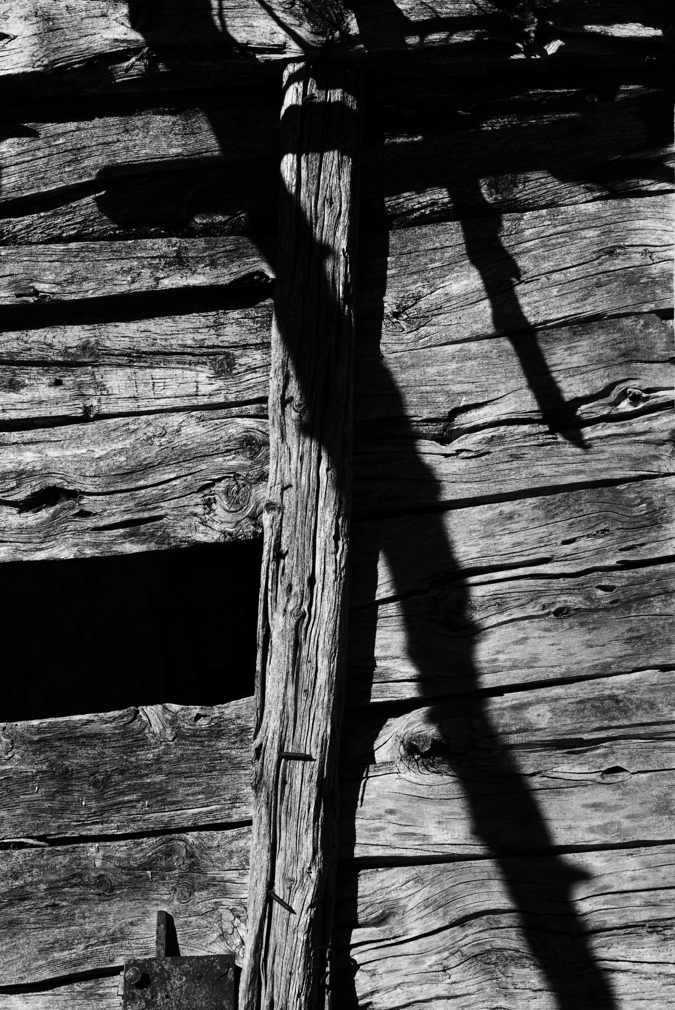 foto: Eduardo Seco