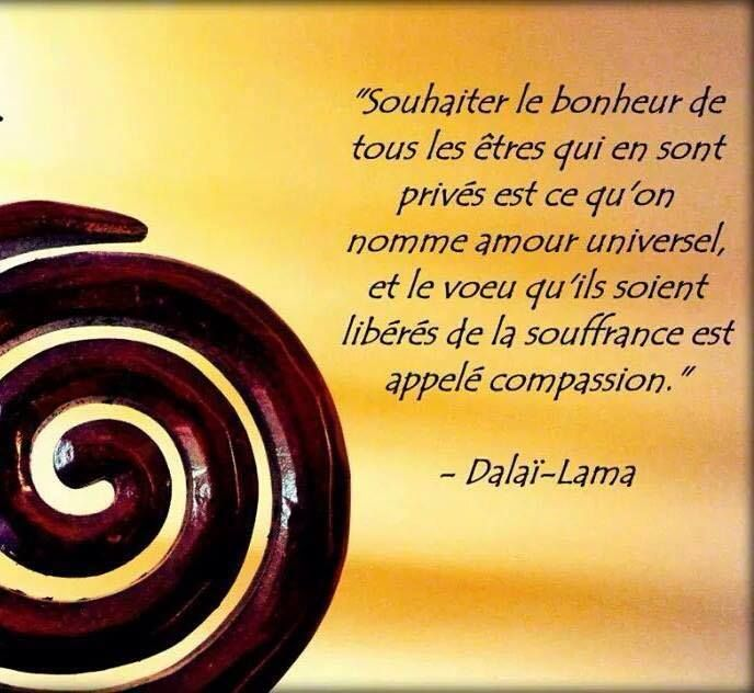 Dalaï Lama 52 Citations Citation Dalai Lama Et Dictons