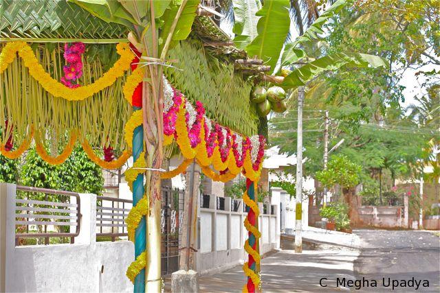 Kerala wedding entrance banana and coconut decoration google kerala wedding entrance banana and coconut decoration google search kerala pinterest wedding entrance weddings and wedding junglespirit Image collections