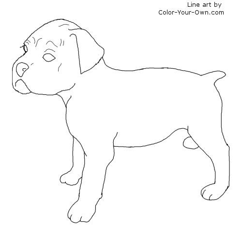 Boxer Puppy Line Art Puppy Coloring Pages Dog Coloring Page Coloring Pages