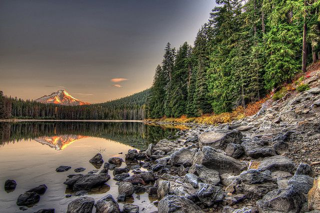 Frog Lake In Color Oregon travel, Places to travel