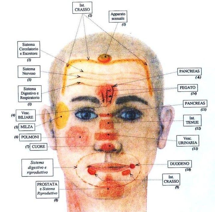 No solo cromopuncture diagn stico de la cara ter pies pinterest reflexology - Finestra che si apre sul lato superiore ...