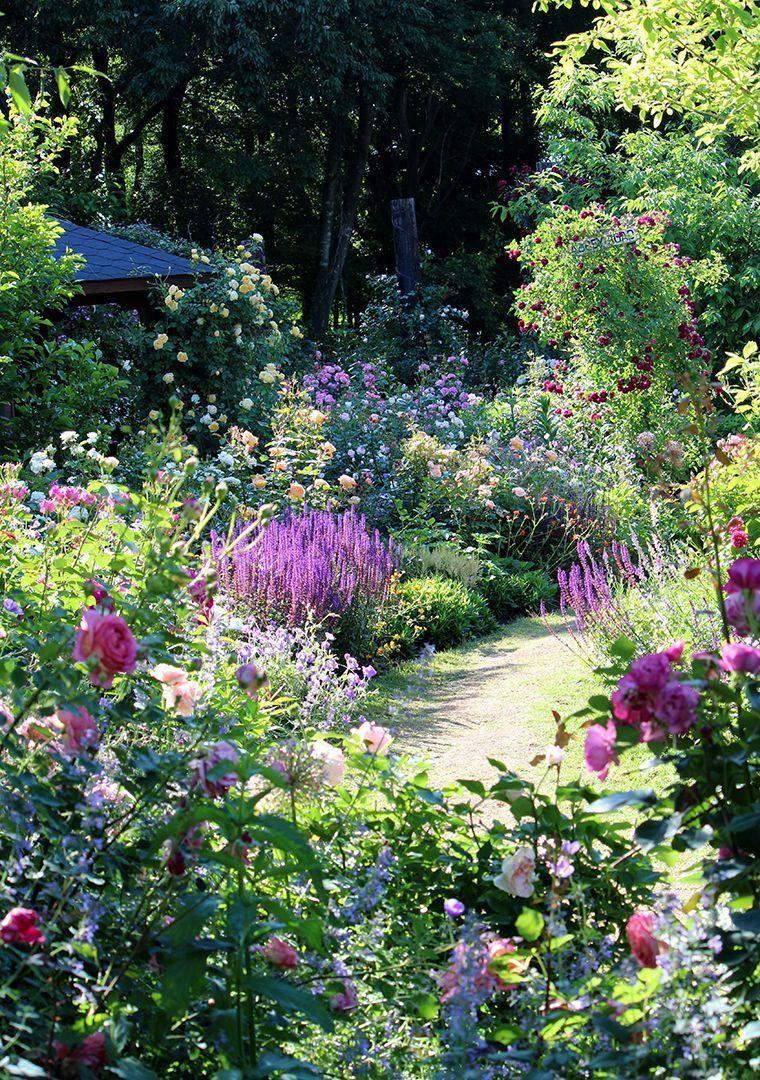 Pin By Luska M On Border Garden In 2020 Perennial Garden Beautiful Gardens Cottage Garden