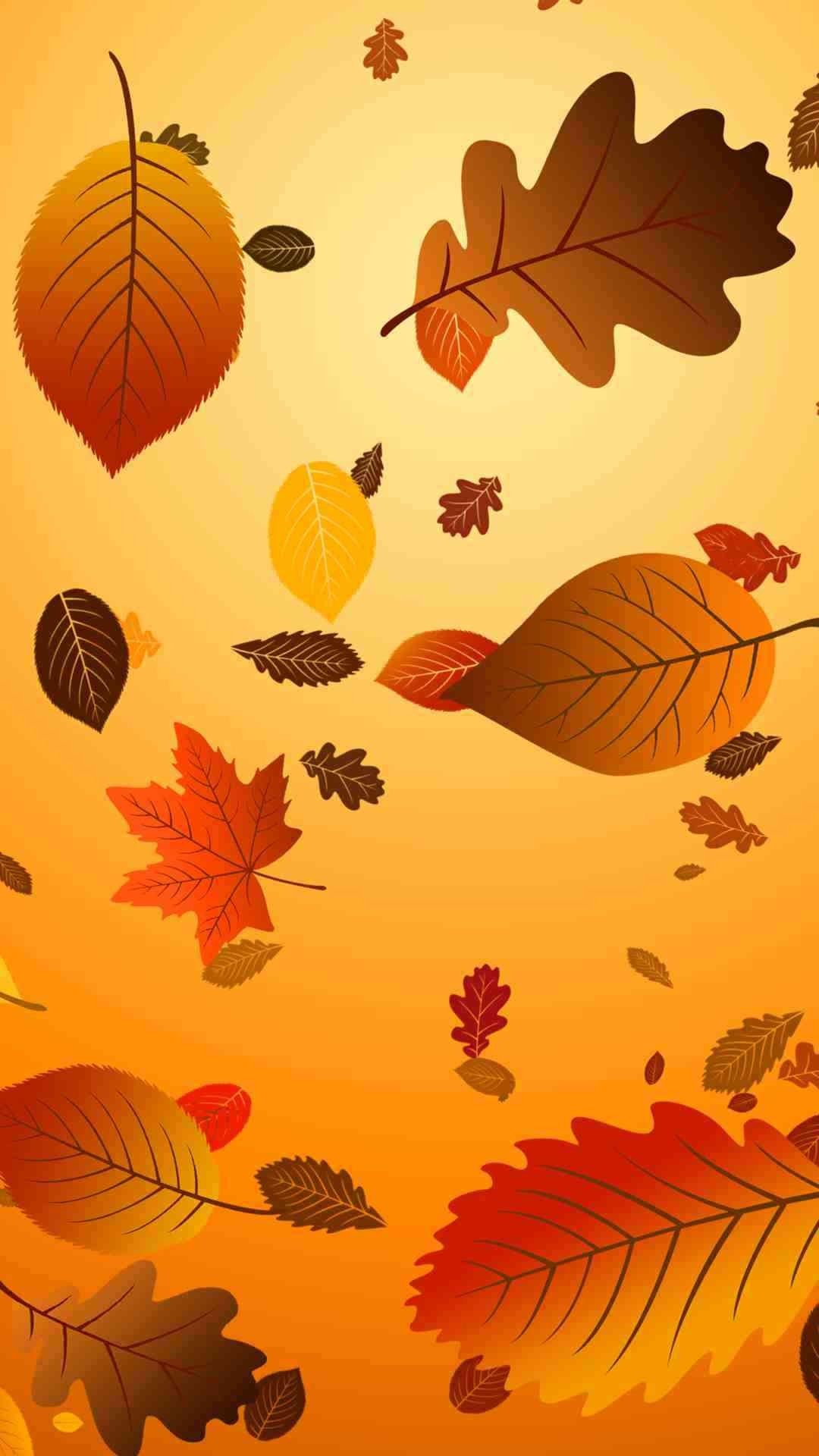 Which 2015 Thanksgiving iphone 6 plus wallpaper do you