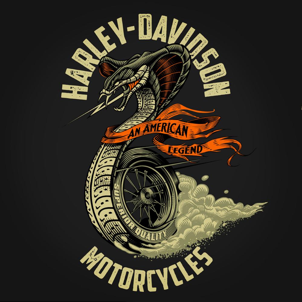 Hd Cobra On Behance Harley Davidson Artwork Biker Logo Design Harley Davidson Posters