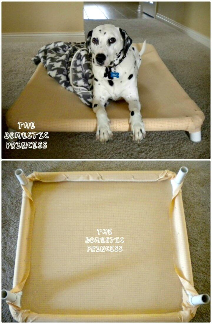 9 Diy Dog Bed Ideas Using Pvc Pipe Pet Tips