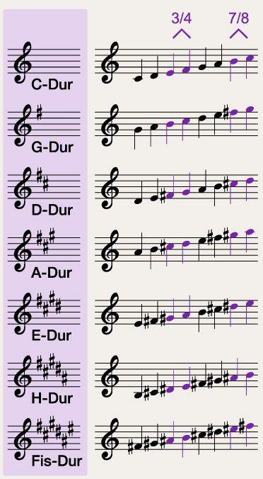 Trompis Dschungelcamp - Dur-Tonleiter #pianomusic