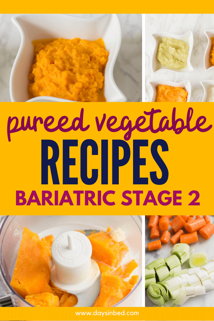 Vegetable Puree Recipes For The Pureed Food Diet Days In Bed Recipe Pureed Food Recipes Bariatric Recipes Sleeve Bariatric Recipes Sleeve Liquid Diet