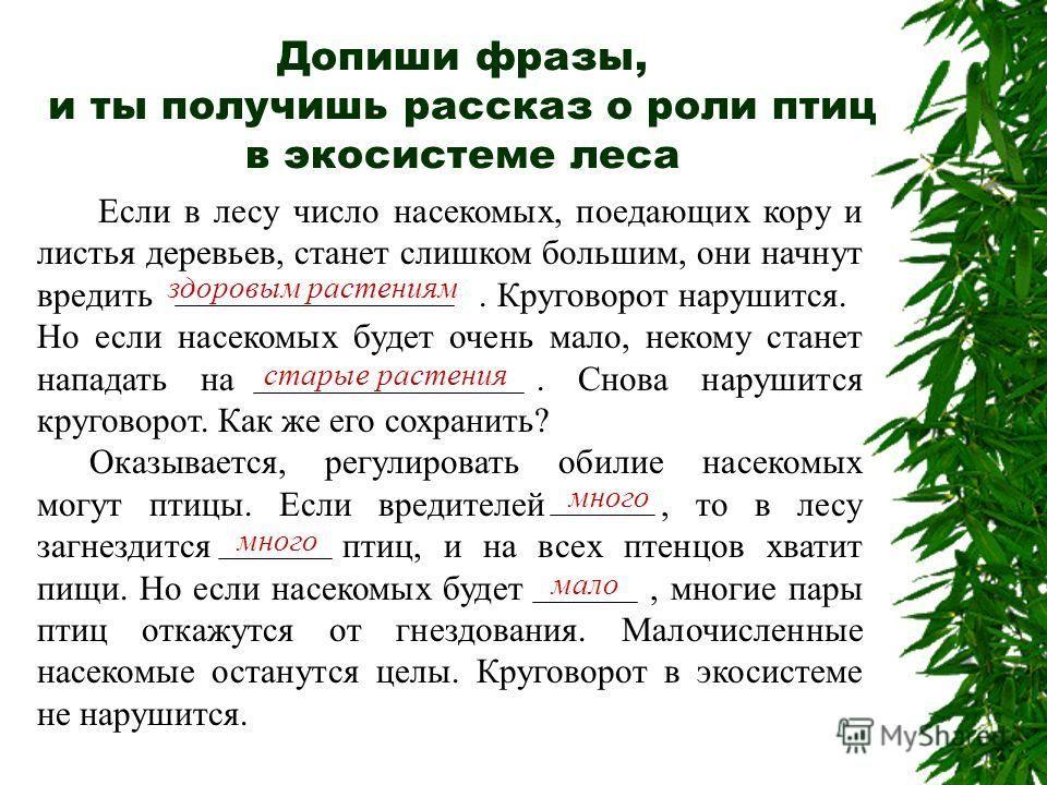 Списывай.ру математика 5 класс истомина