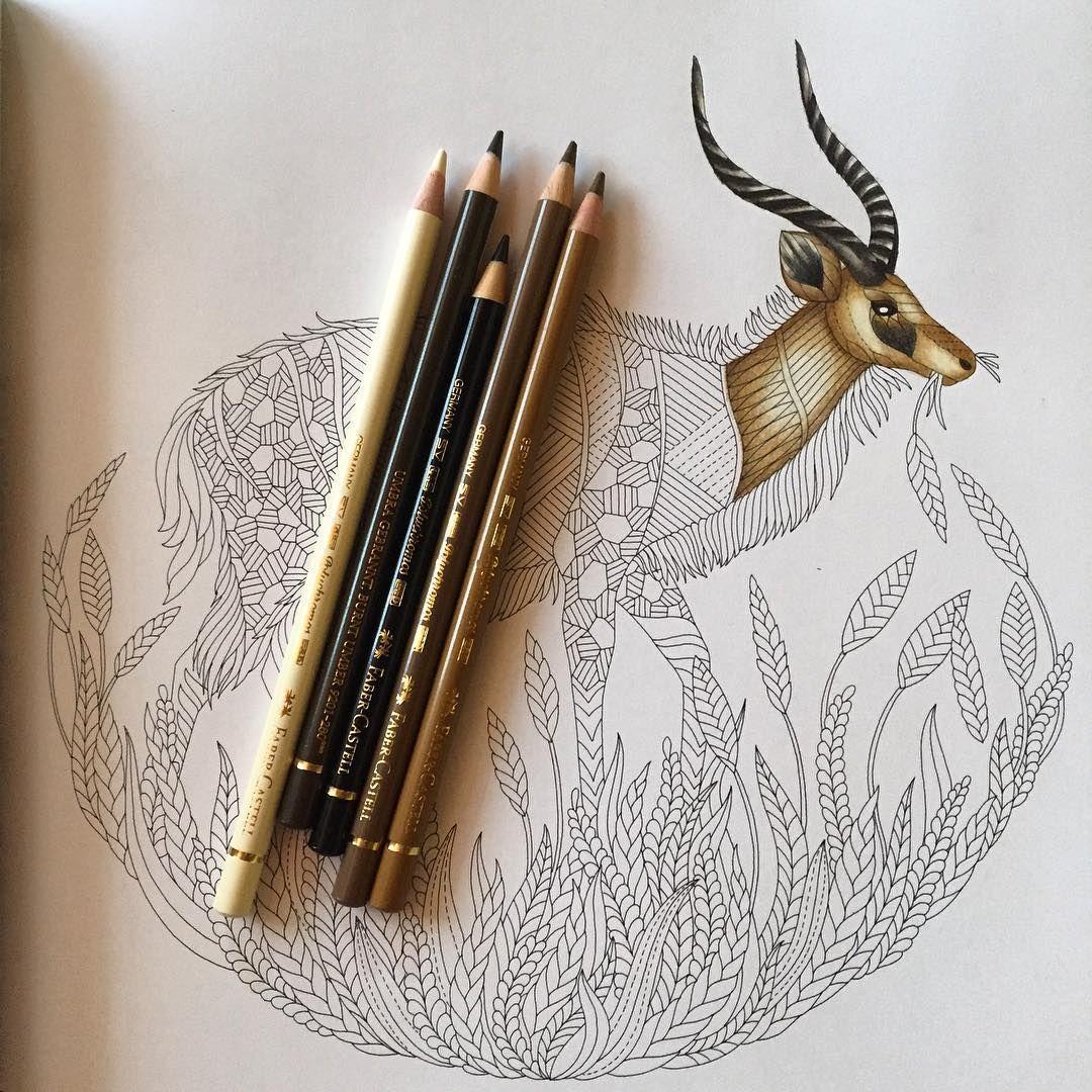 Ivka Hoc On Instagram New Wip Workinprogress Milliemarotta Milliemarottabooks Wildsavannah Fabe Color Pencil Art Johanna Basford Coloring Faber Castell