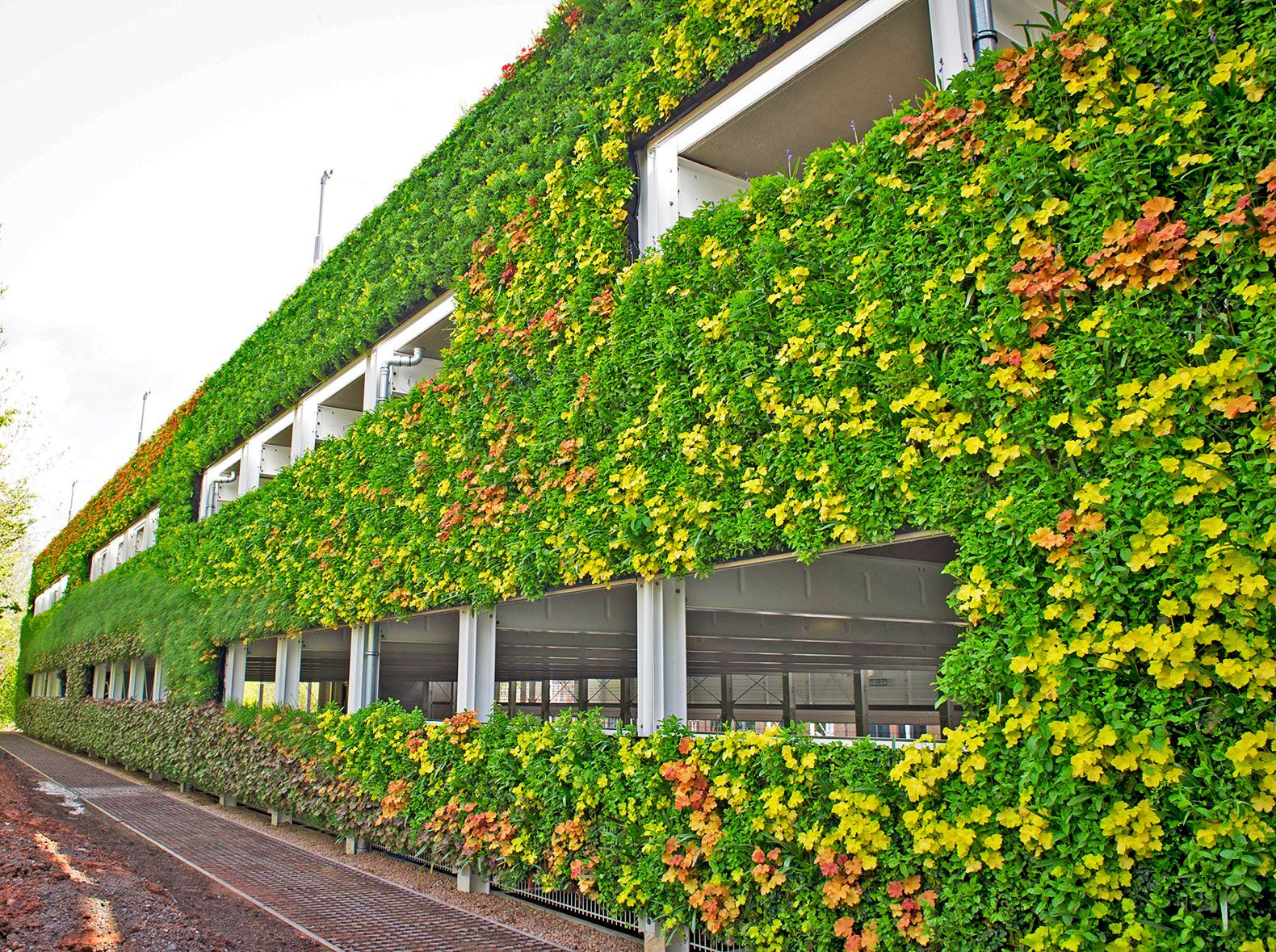 europes largest living wall unveiled in the uk - Garden Design Grid
