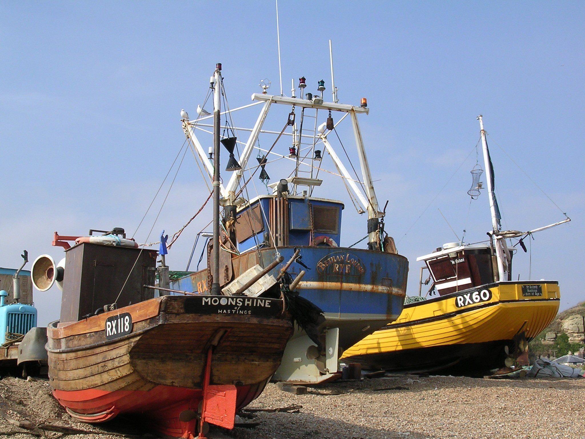 Fresh Based What Boat
