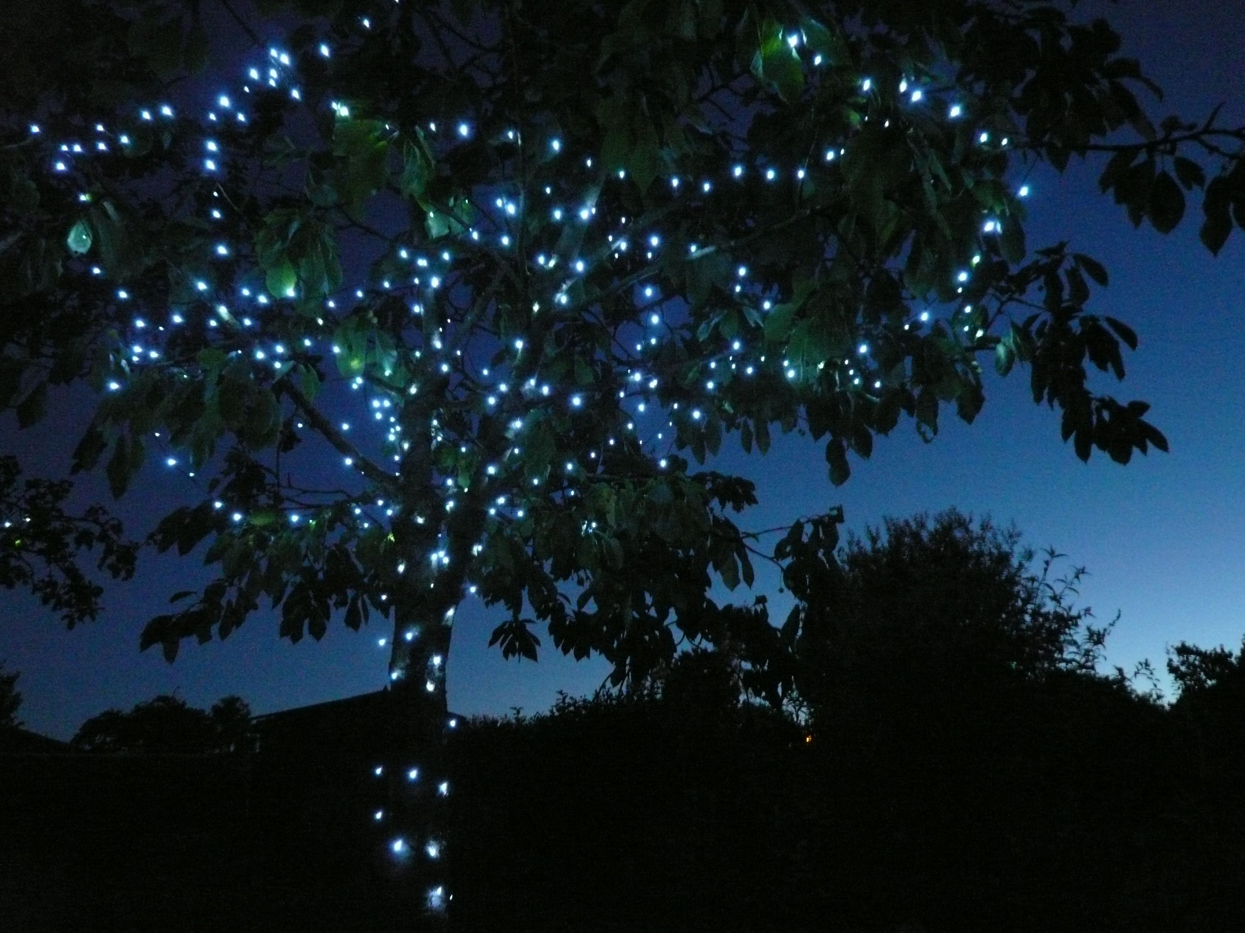 Solar String Light 的图片搜索结果