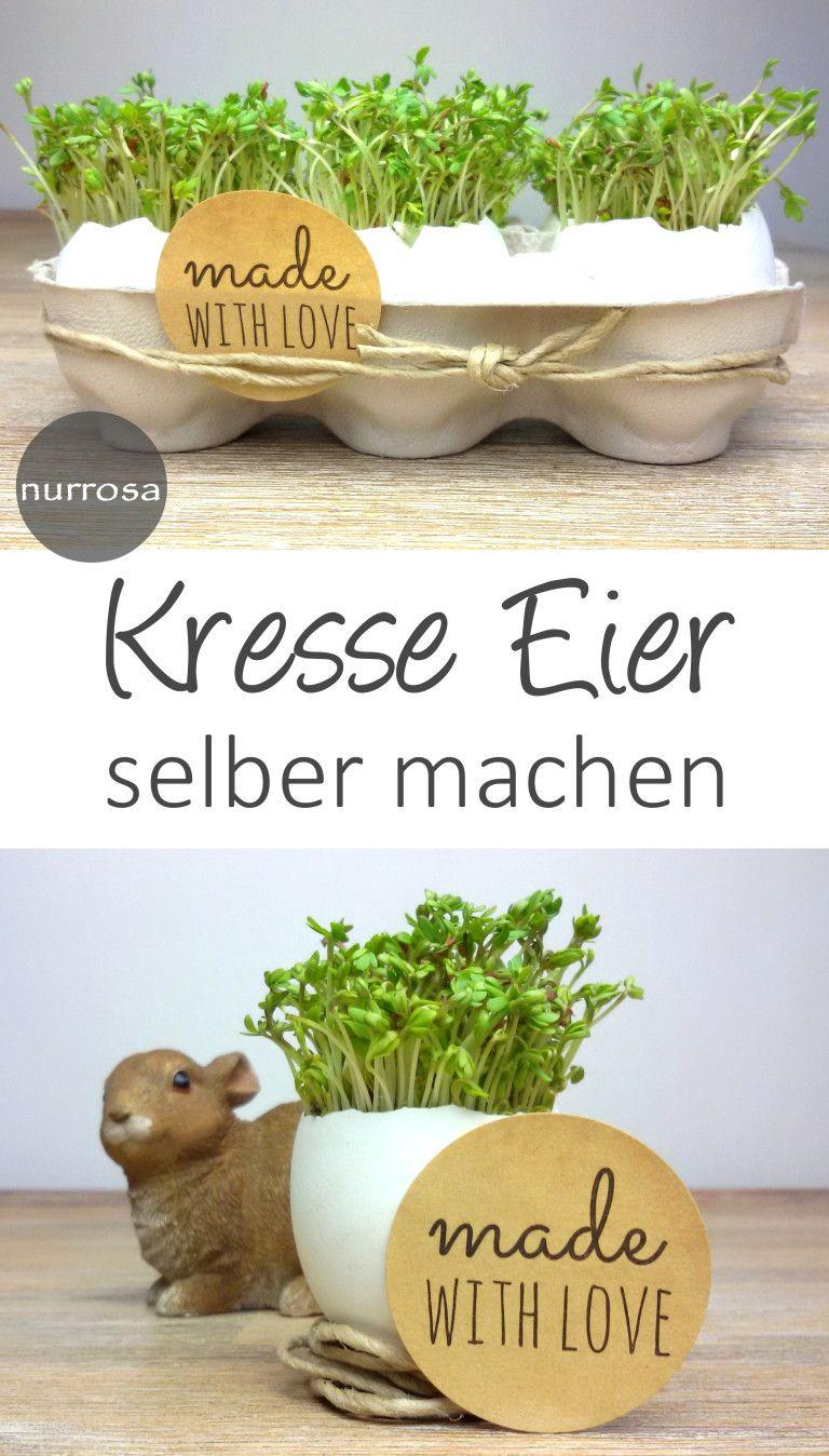 Kresse – Eier zu Ostern basteln DIY