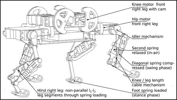 A Diagram Of The Cheetah Cub Robot Image Courtesy Of