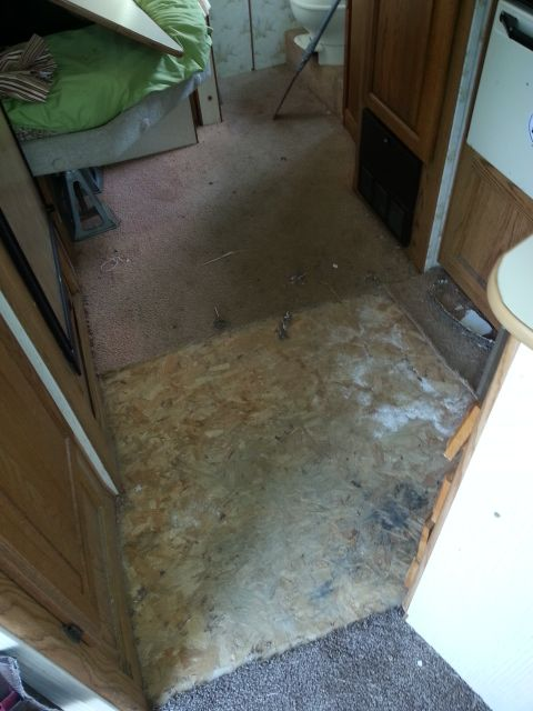 Removing Old Carpet To Replace With New Vinyl Flooring