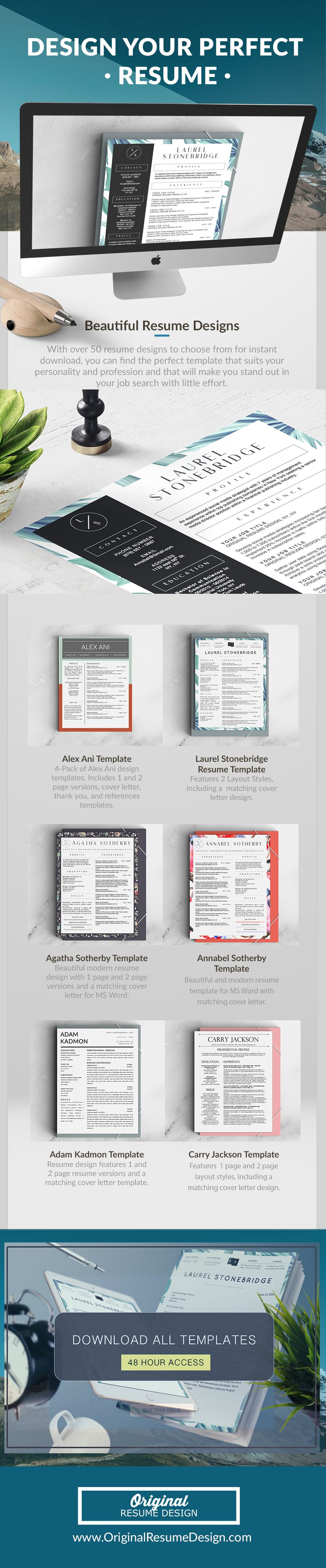 beautiful resume designs to help you stand out in your job