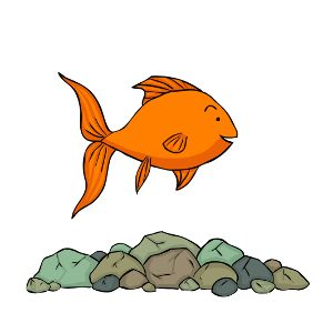 Substrates For Goldfish Pebbles And River Rocks Goldfish Tank Goldfish Names Goldfish