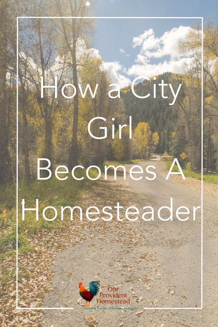how a city becomes a homesteader city country girls