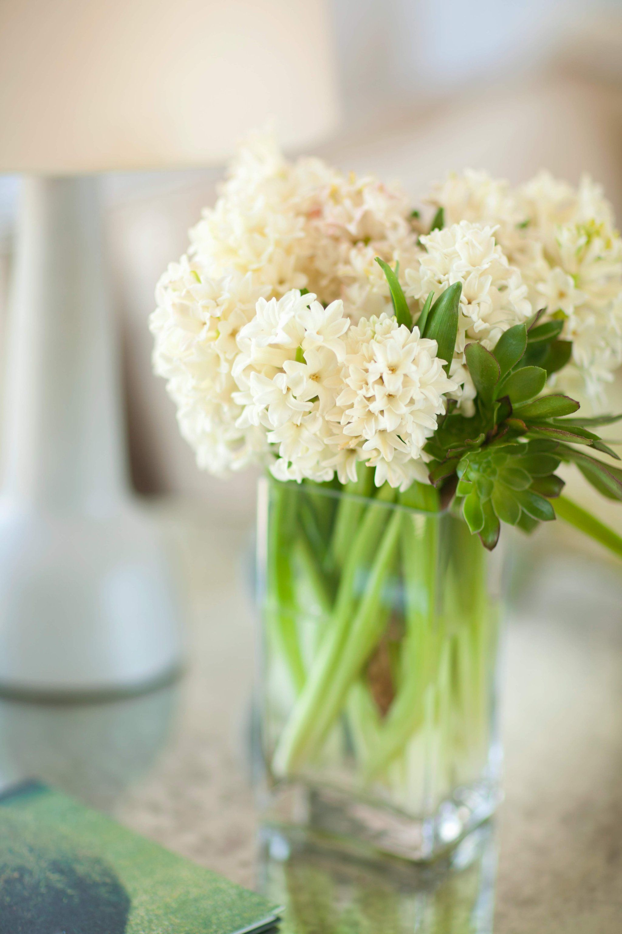 Birth flowers are a real thing and you need to know the