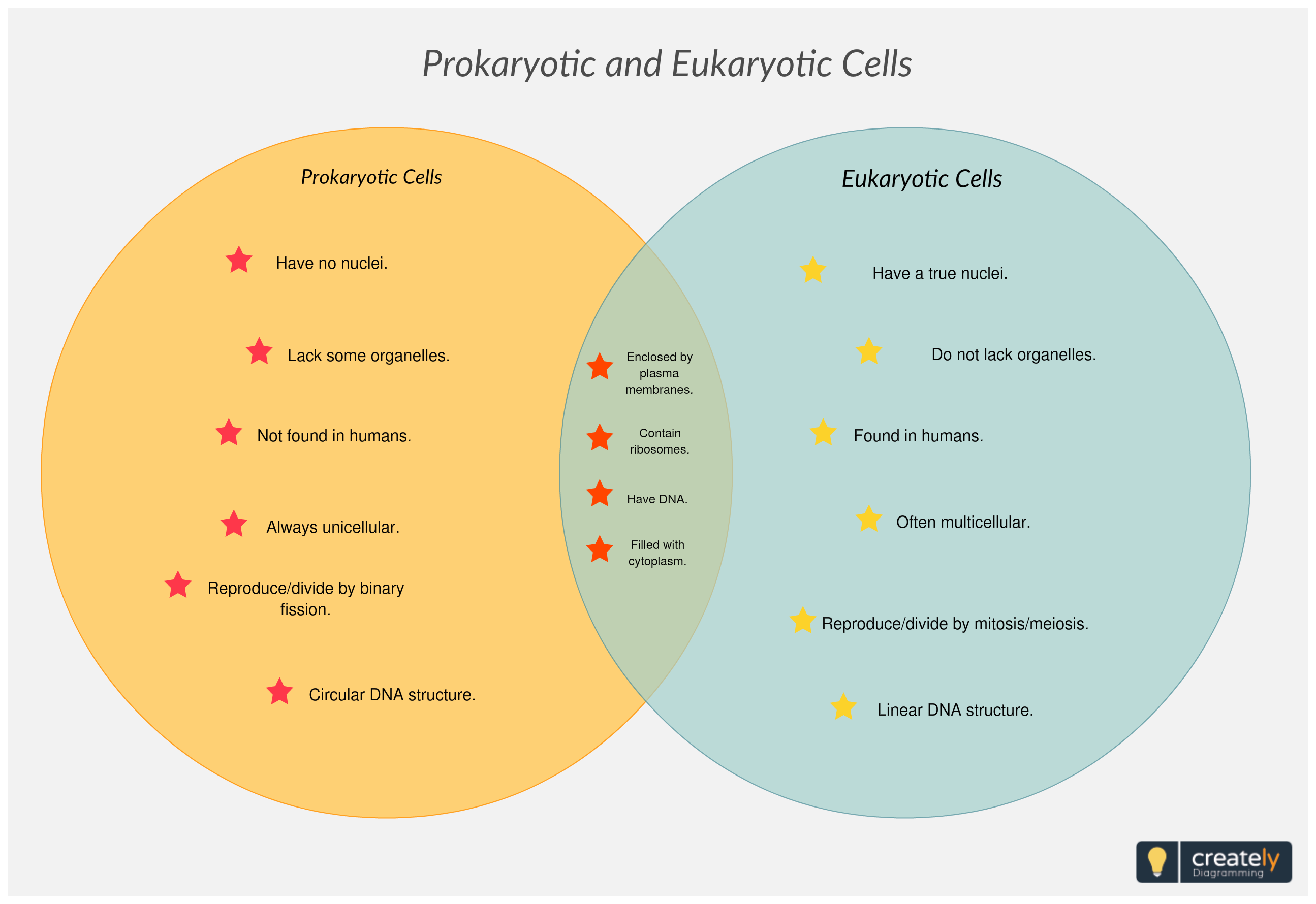 medium resolution of comparing prokaryotic and eukaryotic cells prokaryotes are single celled organisms of the domains bacteria