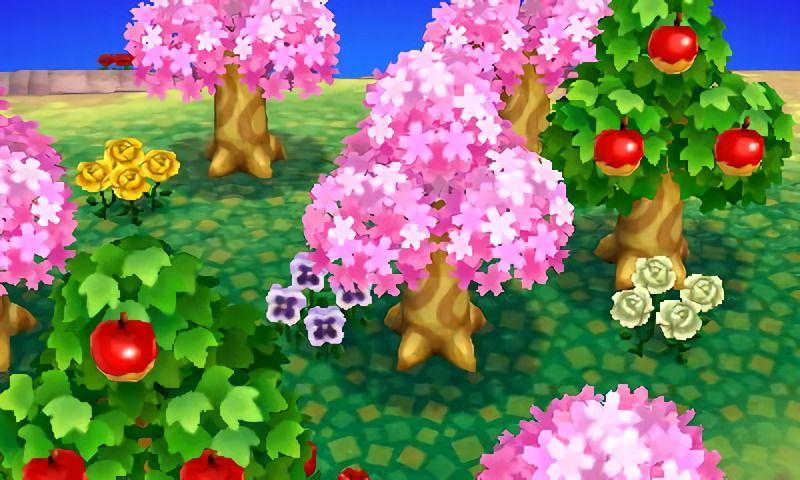 Animal Crossing Apple Trees Animal Crossing Animals Acnl