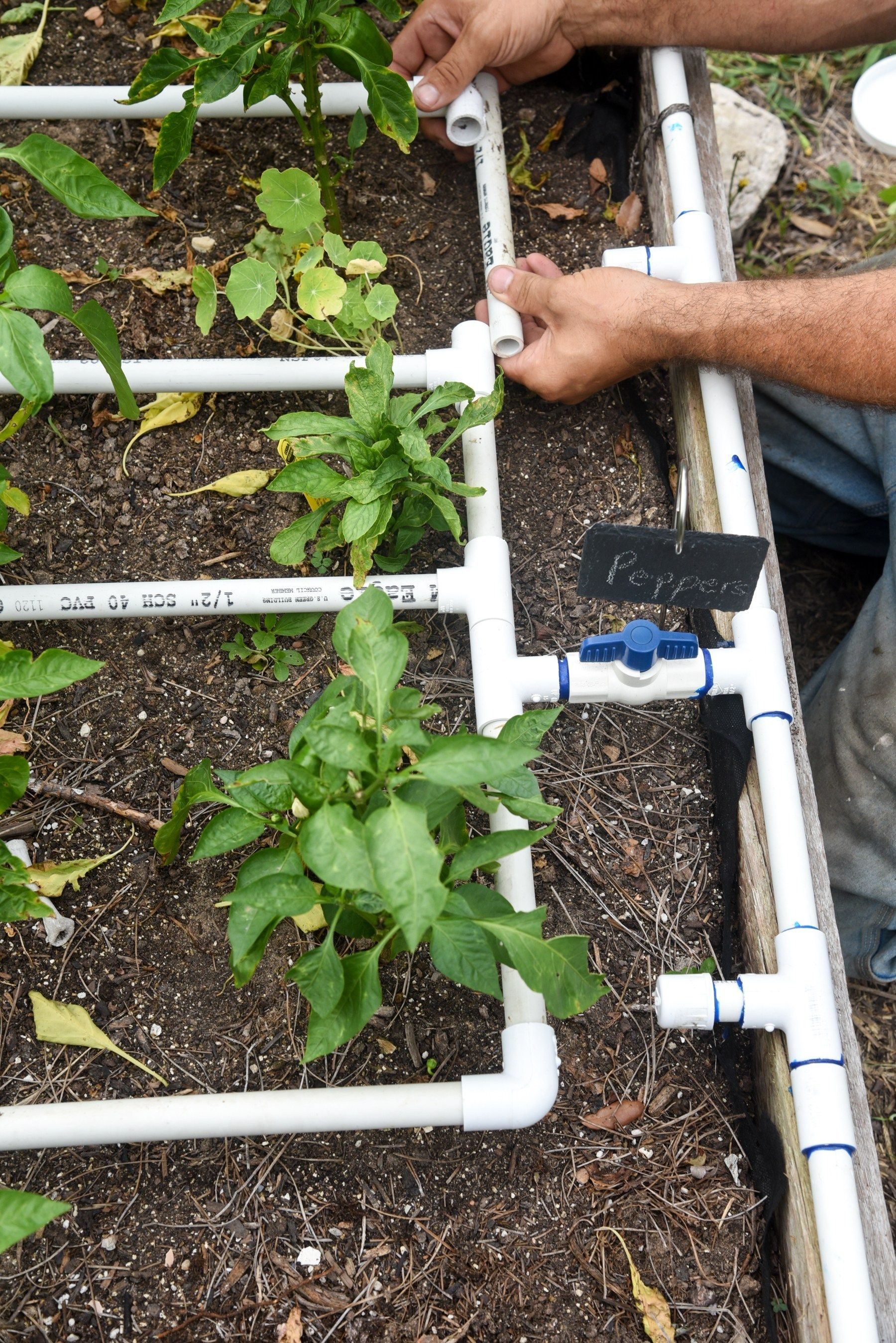 Raised Bed Drip Irrigation Watering System Drip Irrigation Watering System In 2020 Garden Irrigation System Garden Watering System Drip Irrigation