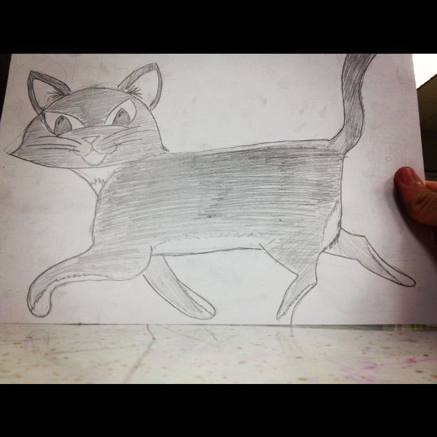 Learned how to draw a cat . . .