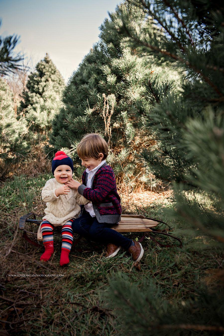 Styledholidaymini Holidaymini Minishoot Xmasshoot Xmasphotoshoot Christmastphotosho Family Christmas Pictures Christmas Photography Family Holiday Photos