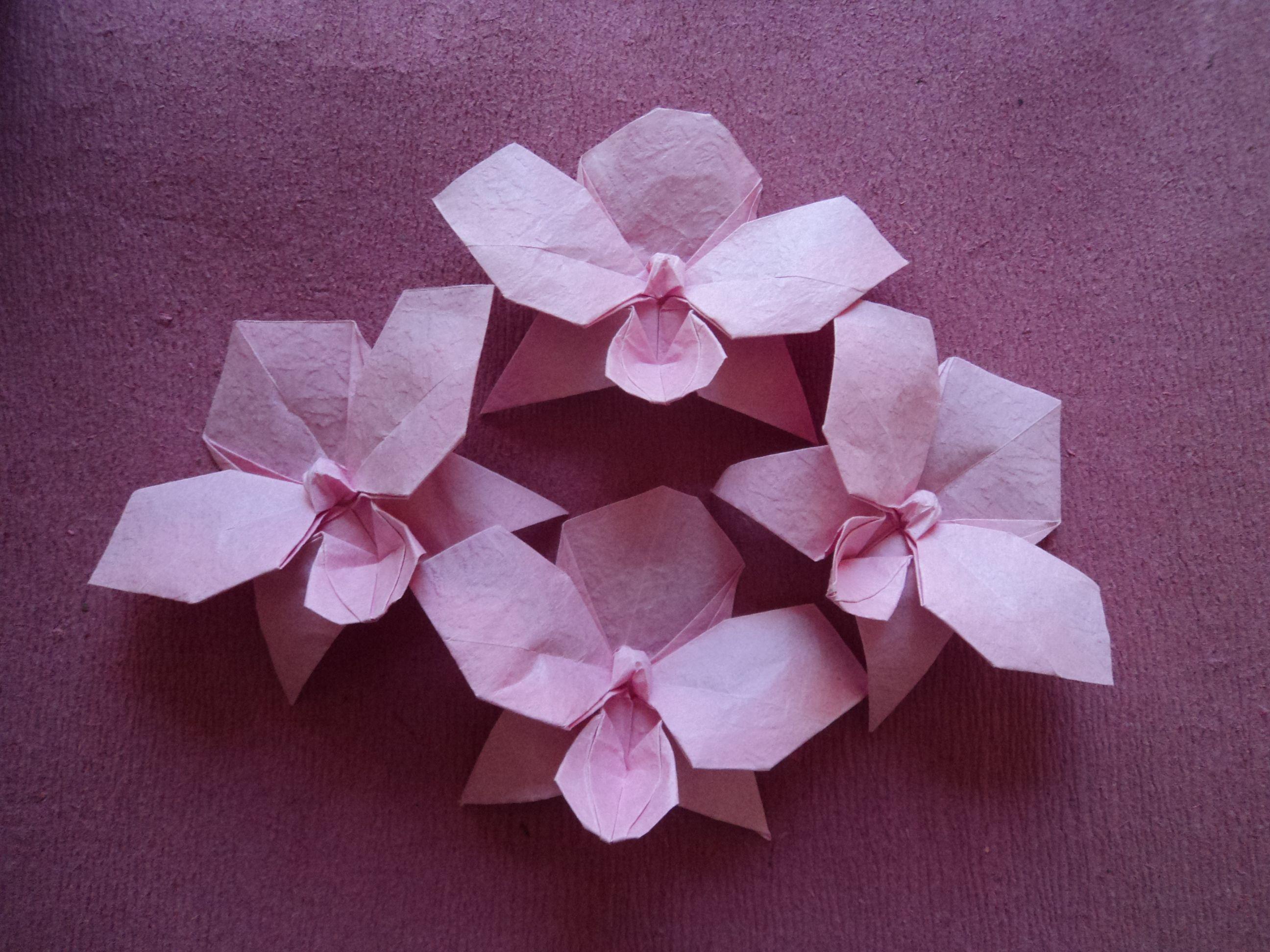 origami orchid origami graciela pinterest ���