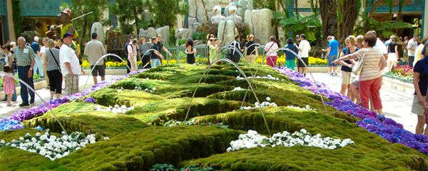 Bellagio Conservatory And Botanical Gardens., Free