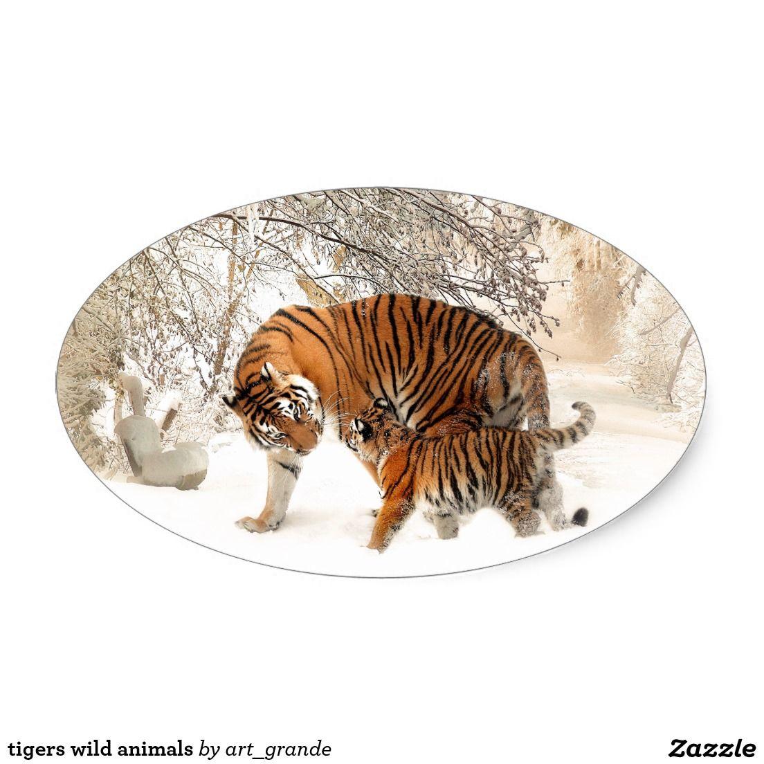 tigers wild animals oval sticker