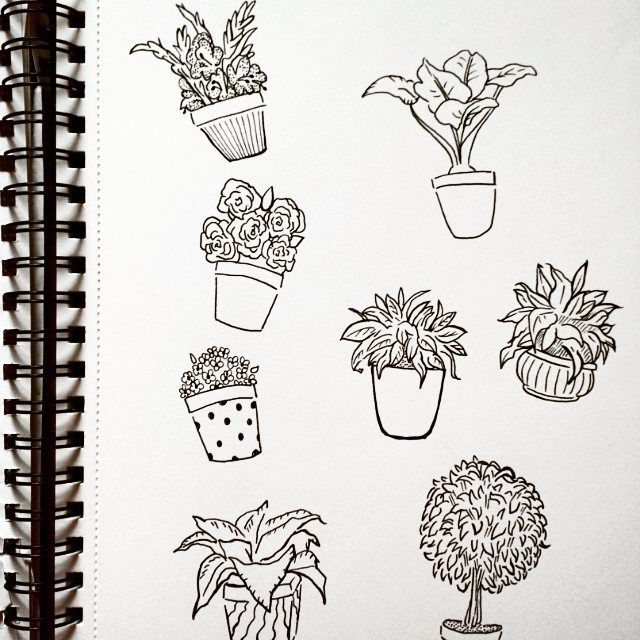 Flower Drawing On Tumblr: Pot Plant Doodles After My Nap #draw #drawing #pen