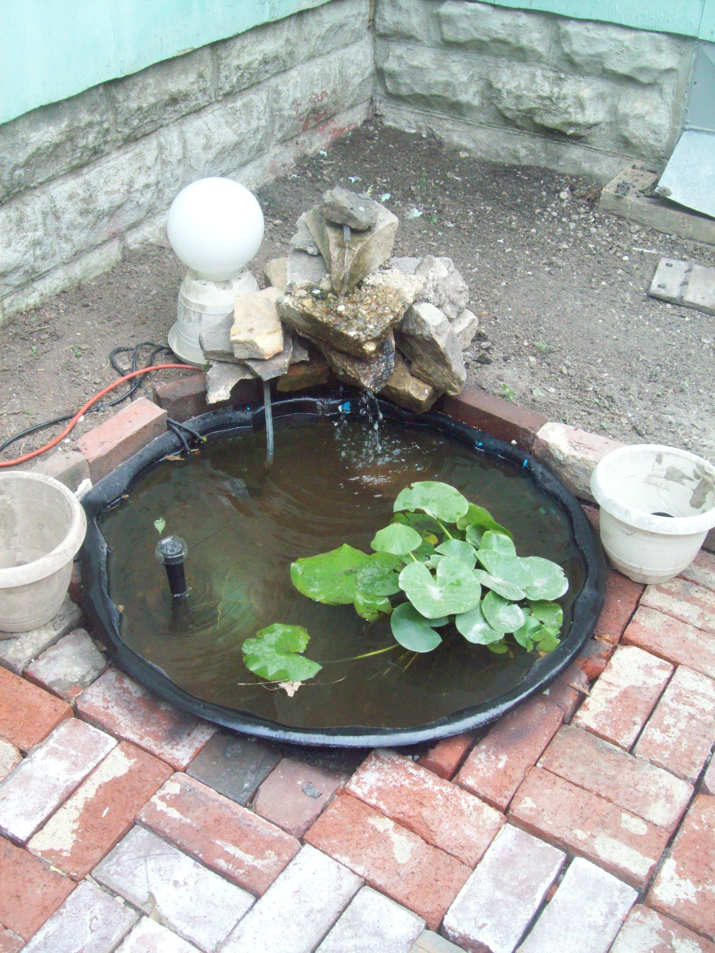 My go at a small pond for water lillies i bought a small for Pond fountains for sale