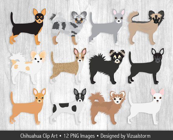 Hand Drawn Chihuahua Clipart Handmade Png Chihuahuas Mexican Dog