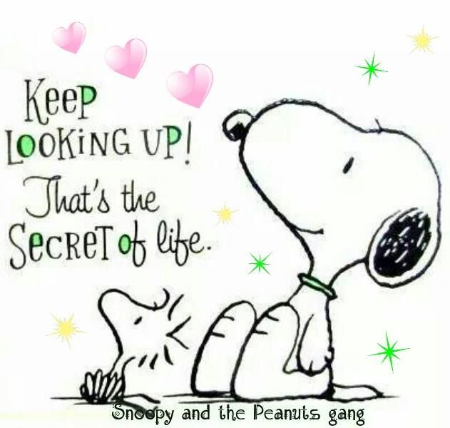 Keep Looking Up That S The Secret In Life Snoopy Quotes Look Up Quotes Keep Looking Up