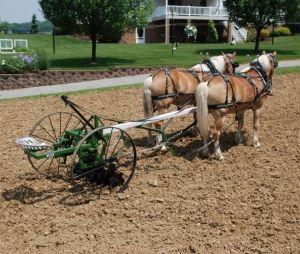 Horse powered farm equipment
