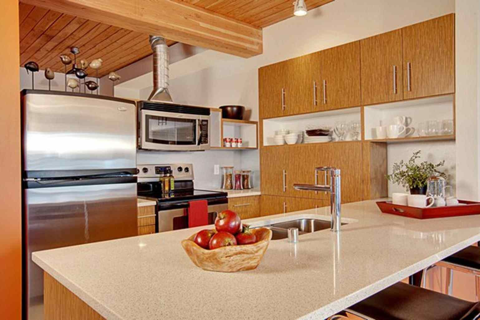 Excellent picture of apartment kitchen themes ideas apartments