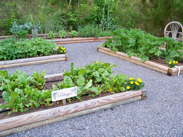 garden beds in gravel:  My dream!  So french potager.