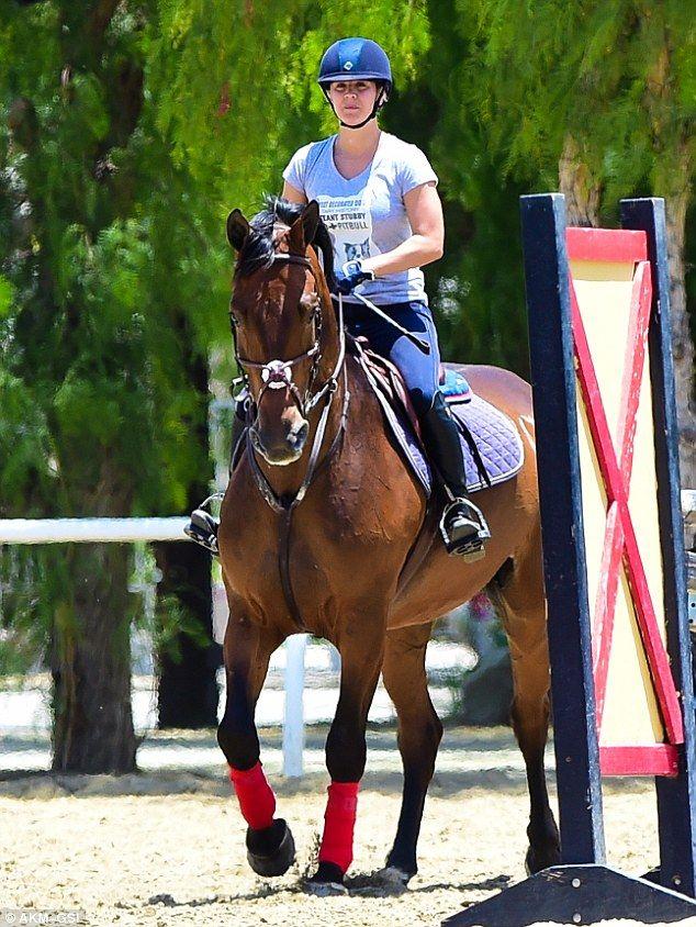 bay horse show - photo #30