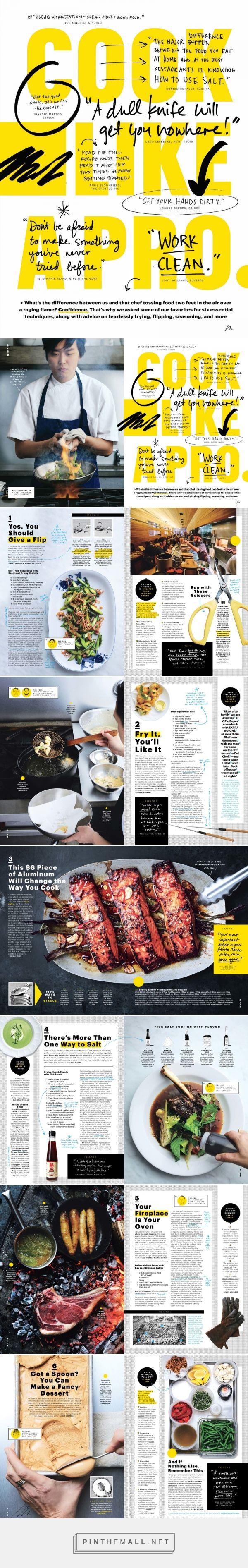 Cook Like A Pro - Alaina Sullivan