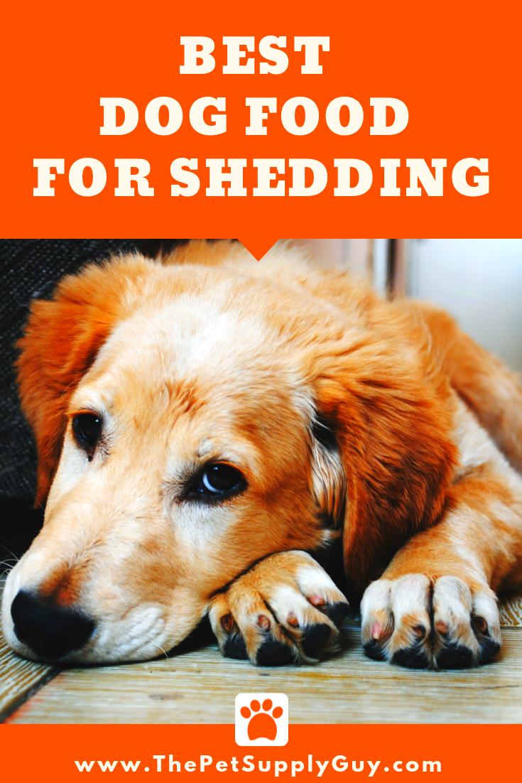Best Dog Food for Shedding and Dry Skin Best dog food