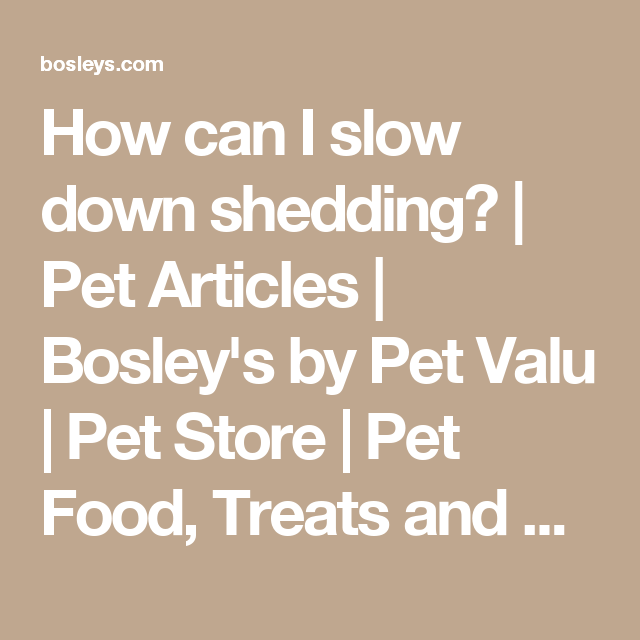 How Can I Slow Down Shedding Pet Articles Bosley S By Pet