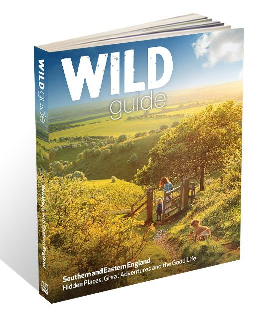 Wild Guide to Southern and Eastern England Book - Wild Things Publishing