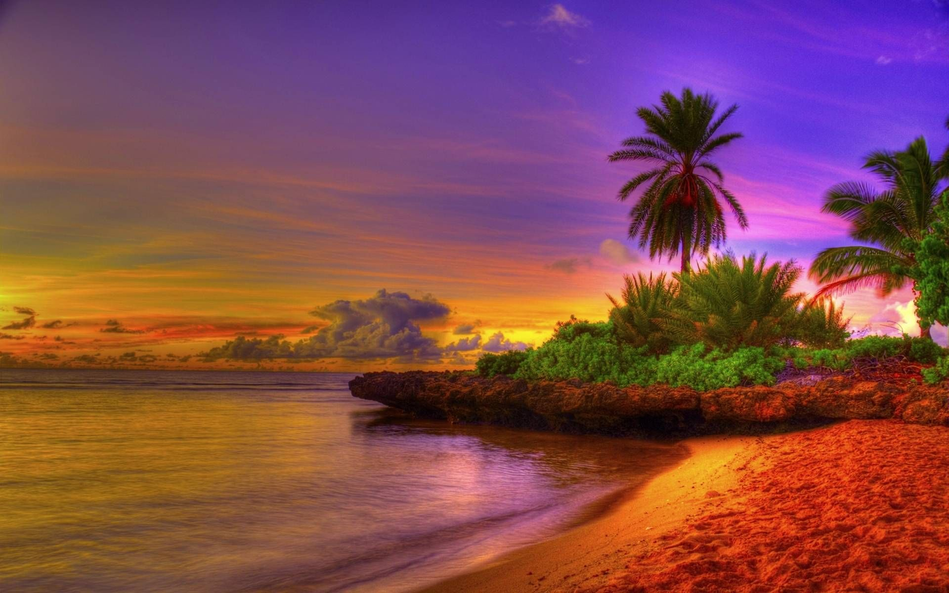 Tropical Beach Sunrise Hd Cool 7 HD Wallpapers amagico