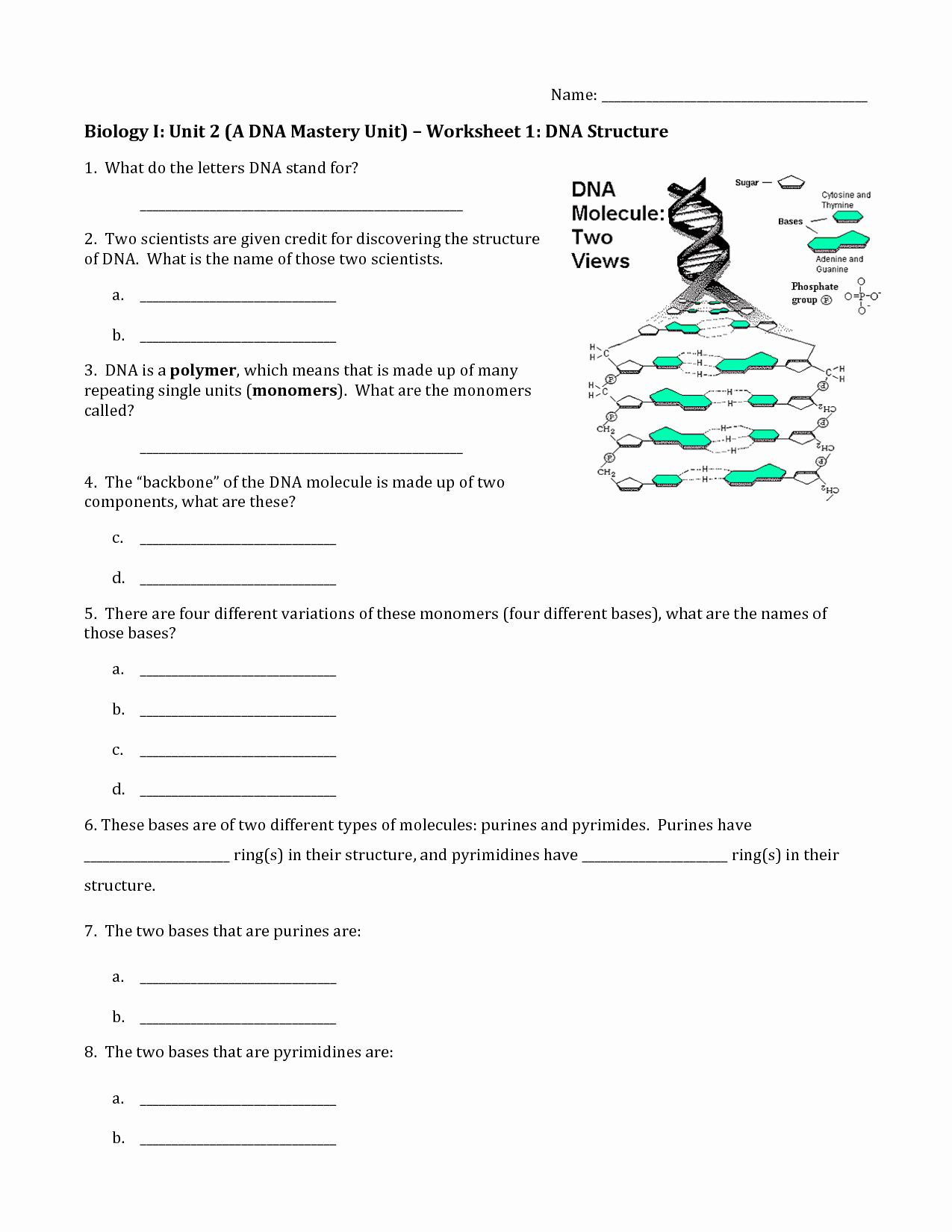 Dna Structure Worksheet Answer Best Of 19 Best Of The