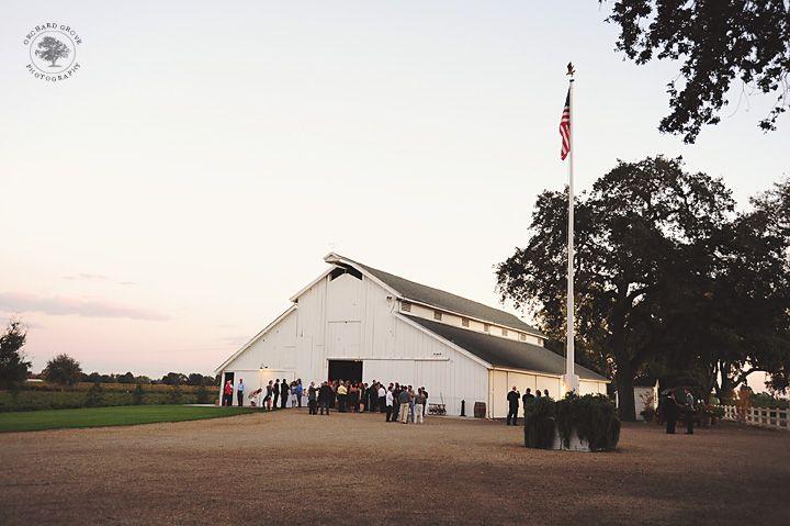White barn reception.  Oak Farm Vineyards,  vineyard wedding, Lodi, CA.  www.orchardgrovephoto.com