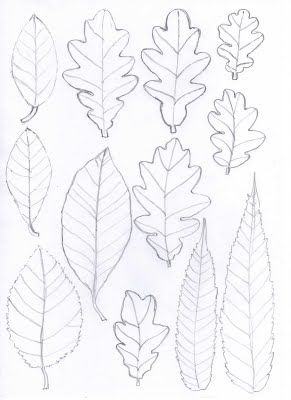 leaf templates design pinterest paper leaves leaf template