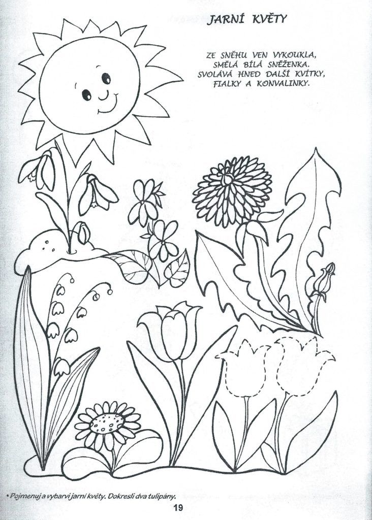 Jarni Kvety Pracovni Listy 2 Pinterest Coloring Pages Crafts