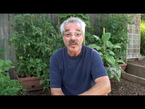 dc308de23adb0f518c0148f78b023ab3 - Paul James The Gardener Guy Bio